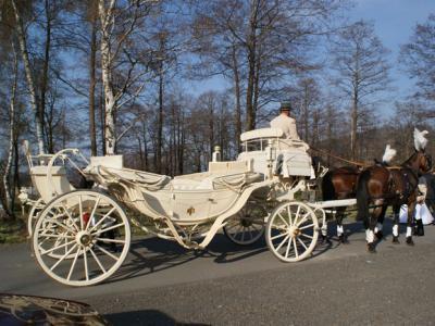 Sala weselna w górach - Wesele w Kotlinie Kłodzkiej Image 3