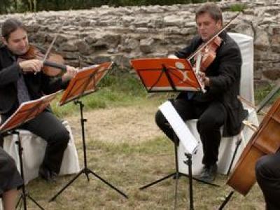 Kwartet Demi Sec - oprawa muzyczna